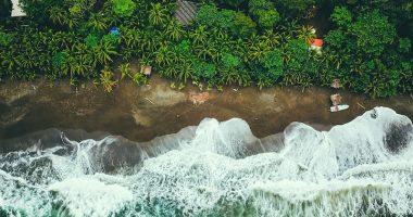 ¿A qué sabe Panamá? Recorremos el país de origen de nuestro chocolate