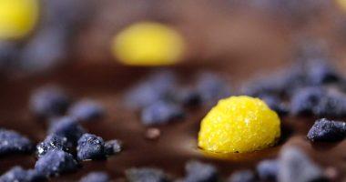 Novedades marzo: Innovación en nuestro chocolate y temporada de bodas